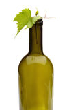 Wine bottle and grape vine Stock Photography