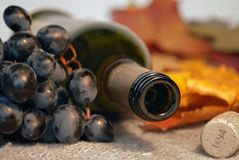 Wine bottle with grapes Stock Photos