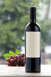 Wine bottle and grapes royalty free stock photo