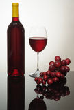 Wine bottle and grapes Stock Image