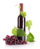 Wine bottle and grapes isolated Royalty Free Stock Images