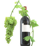 Wine bottle and leaves Royalty Free Stock Photo