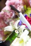 Wine bottle opener Stock Photos