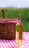 Wine bottle with picnic basket Royalty Free Stock Images