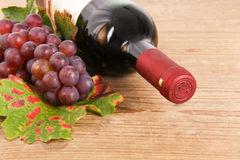 Wine bottle with place for text. Red wine bottle with grapes Royalty Free Stock Photo