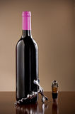 Wine bottle, stopper  and a corkscrew Royalty Free Stock Photos