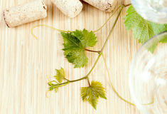 Wine bottle with vine and wine cork. Royalty Free Stock Photos