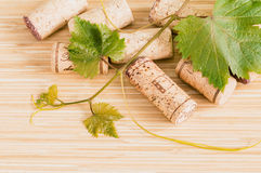 Wine bottle with vine and wine cork. Put on the board Royalty Free Stock Photography