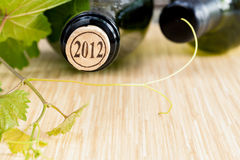 Wine bottle with vine and wine cork . Stock Image