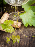 Wine bottle with vine and wine cork . Stock Photography