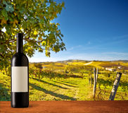 Wine bottle on vineyards Royalty Free Stock Photo