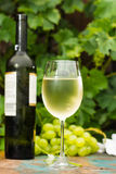 Wine bottle and wine glass with ice cold white wine, outdoor ter Royalty Free Stock Image