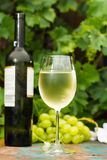 Wine bottle and wine glass with ice cold white wine, outdoor ter Royalty Free Stock Photo