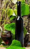 Wine bottle wooden background grape leaves. Winery art concept. Bottle wine and wineglass natural environment. Sommelier. Recommend high quality product stock photo