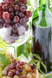 Wine bottle and young grape Stock Photo
