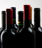 Wine bottles Royalty Free Stock Image