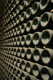 Wine bottles. In a wine cellar Stock Photography