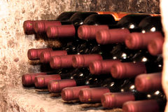 Wine bottles in cellar Royalty Free Stock Image