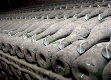 Wine bottles in a cellar Stock Photos