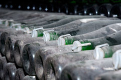 Wine bottles in a cellar Stock Images