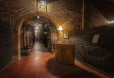 Wine Bottles in the Cellar Stock Photography