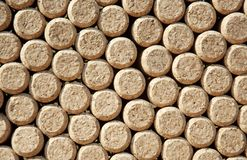 Wine bottles corks Stock Image