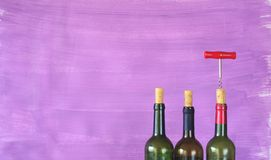 Wine bottles, Royalty Free Stock Photos