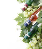 Wine bottles and grape Royalty Free Stock Photo
