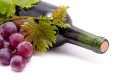 Wine bottles and grapes. Stock Photography