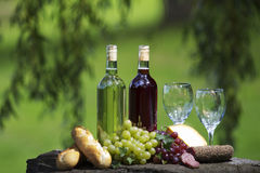 Wine Bottles. Two bottles of wine and glasses, some grapes, bread and cheese outside stock photos