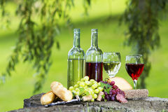 Wine Bottles. Two bottles of wine and glasses, some grapes, bread and cheese outside royalty free stock photography
