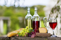 Wine Bottles. Two bottles of wine and glasses, some grapes, salami, bread and cheese outside royalty free stock photography