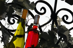 Wine bottles between vine leaves Royalty Free Stock Photography