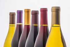 Wine bottles on white Stock Images