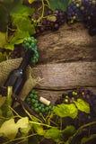 Wine bottles on wood Stock Photos