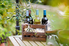 Wine bottles in a wooden crate Stock Images