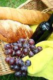 Wine bread and grapes Stock Images