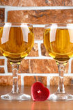 Wine and brick Royalty Free Stock Photography