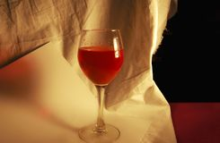 Wine and canvas Royalty Free Stock Photography