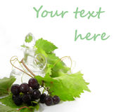 Wine carafe and young grape Stock Photo
