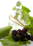 Wine carafe and young grape Stock Image
