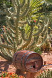 Wine cask. Stock Image