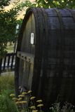 Wine cask in vineyard. Old wooden wine cask in a vineyard stock photography