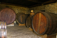 Wine casks. The wooden wine barrels at nature light Stock Image