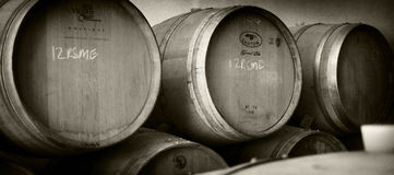 Wine Casks Stock Photos