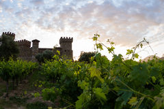 Wine castle in Napa Valley Royalty Free Stock Photo