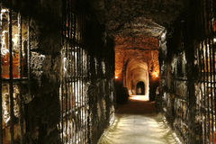 The wine cave in Slovakia. Royalty Free Stock Images