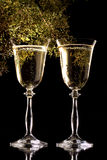Wine for a celebration royalty free stock photography