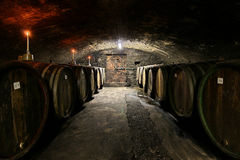 Wine cellar. Of a winery with candles and barrels Royalty Free Stock Images