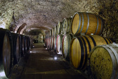 Wine cellar Stock Photography